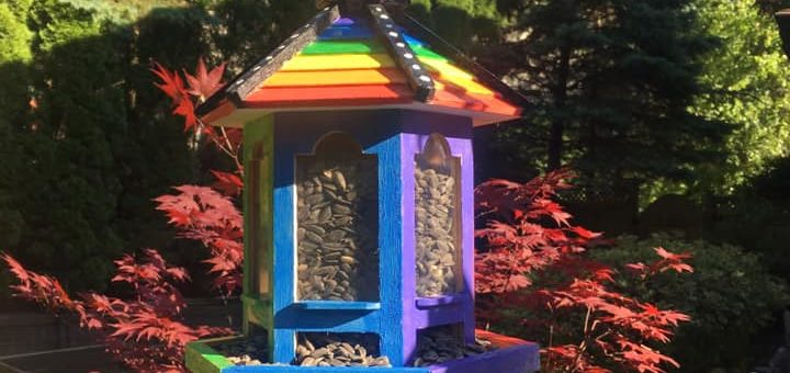 Pride Month Birdfeeder